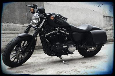 Borse per Harley Sportster